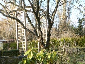 Petit jardin le petit magazine du jardinage et des plantes for Petit materiel de jardinage
