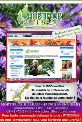 magazine petit jardin n 64 d cembre 2011 jardinage plantes et fleurs. Black Bedroom Furniture Sets. Home Design Ideas