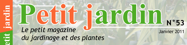 magazine petit jardin n 53 janvier 2011 jardinage. Black Bedroom Furniture Sets. Home Design Ideas
