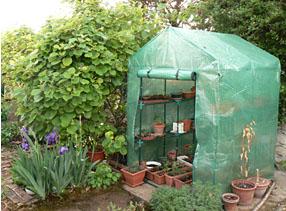 magazine petit jardin n 53 janvier 2011 jardinage plantes et fleurs. Black Bedroom Furniture Sets. Home Design Ideas