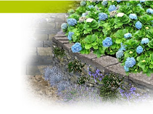 Imprimer le magazine jardinage petit jardin for Exemple d amenagement de jardin