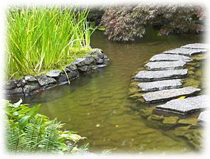 Cr er un jardin aquatique - Faire une mare dans son jardin ...