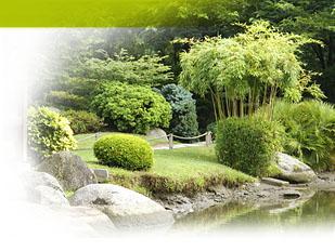 Comment Faire Comment Faire Un Jardin Japonais Exterieur Howto Illustr S