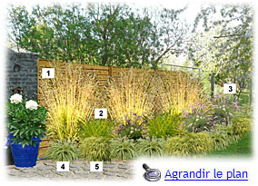 bordure parterre de fleurs 15 plan de jardin graminees. Black Bedroom Furniture Sets. Home Design Ideas
