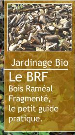 Magazine petit jardin n 84 octobre 2013 jardinage for Magazine jardinage
