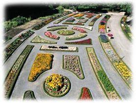 Le jardin botanique de la t te d 39 or lyon for Jardin botanique lyon