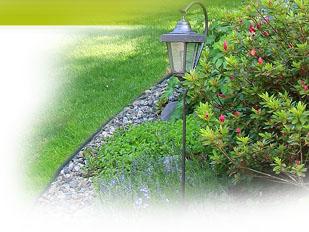 magazine petit jardin n 87 janvier 2014 jardinage. Black Bedroom Furniture Sets. Home Design Ideas