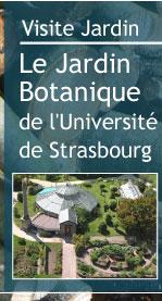 Magazine petit jardin n 87 janvier 2014 jardinage - Jardin botanique de l universite de strasbourg ...