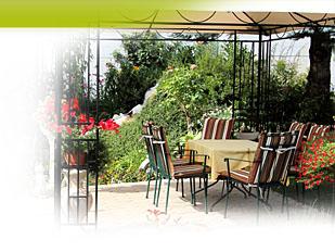 Magazine petit jardin n 93 juillet 2014 jardinage for Amenagement jardin 93
