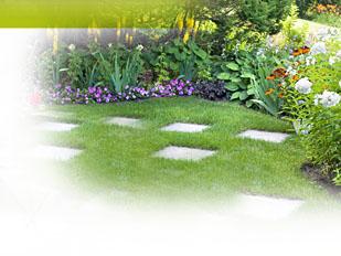 magazine petit jardin n 95 octobre 2014 jardinage. Black Bedroom Furniture Sets. Home Design Ideas