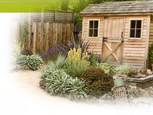 stunning magazine petit jardin n decembree jardinage for amenagement jardin petite surface with. Black Bedroom Furniture Sets. Home Design Ideas