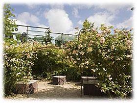 Musée du quai Branly, un jardin symbolique