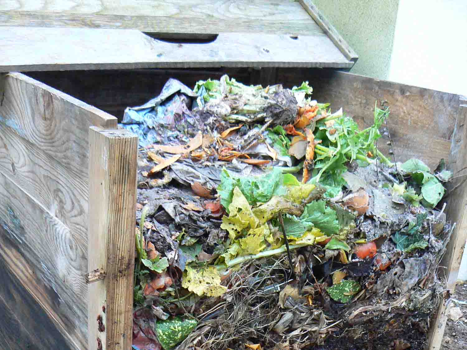 Activateurs 