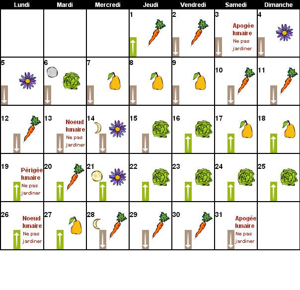Echange de graines troc aux plantes et boutures - Jardiner avec la lune calendrier lunaire ...
