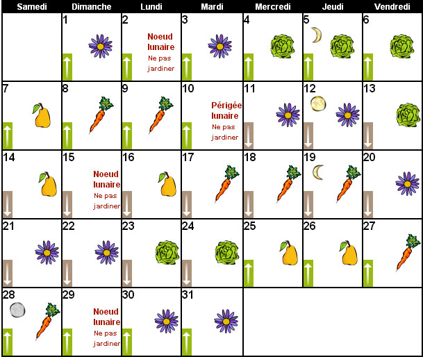Magazine petit jardin n 120 janvier 2017 jardinage plantes et fleurs - Comment jardiner avec la lune ...