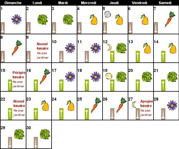 Calendrier lunaire septembre 2013 pour jardiner avec la lune - Graines et jardin calendrier lunaire ...