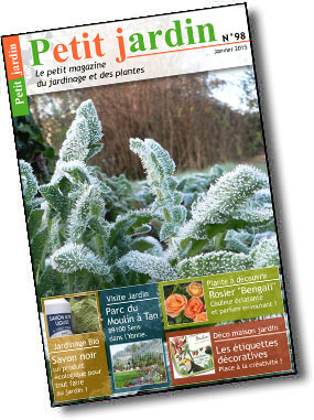 Magazine petit jardin n 98 janvier 2015 jardinage for Magazine jardinage