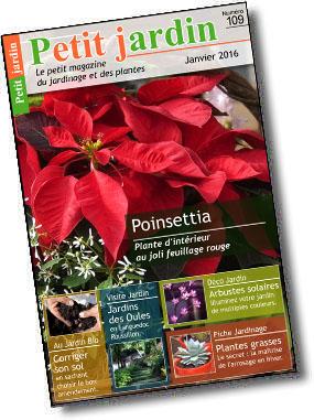 magazine petit jardin n 109 janvier 2016 jardinage plantes et fleurs. Black Bedroom Furniture Sets. Home Design Ideas