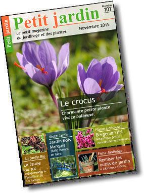 Magazine petit jardin n 107 novembre 2015 jardinage for Magazine jardinage