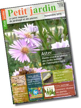 Magazine petit jardin n 118 novembre 2016 jardinage for Magazine jardinage