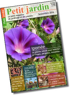 Magazine petit jardin for Magazine jardinage