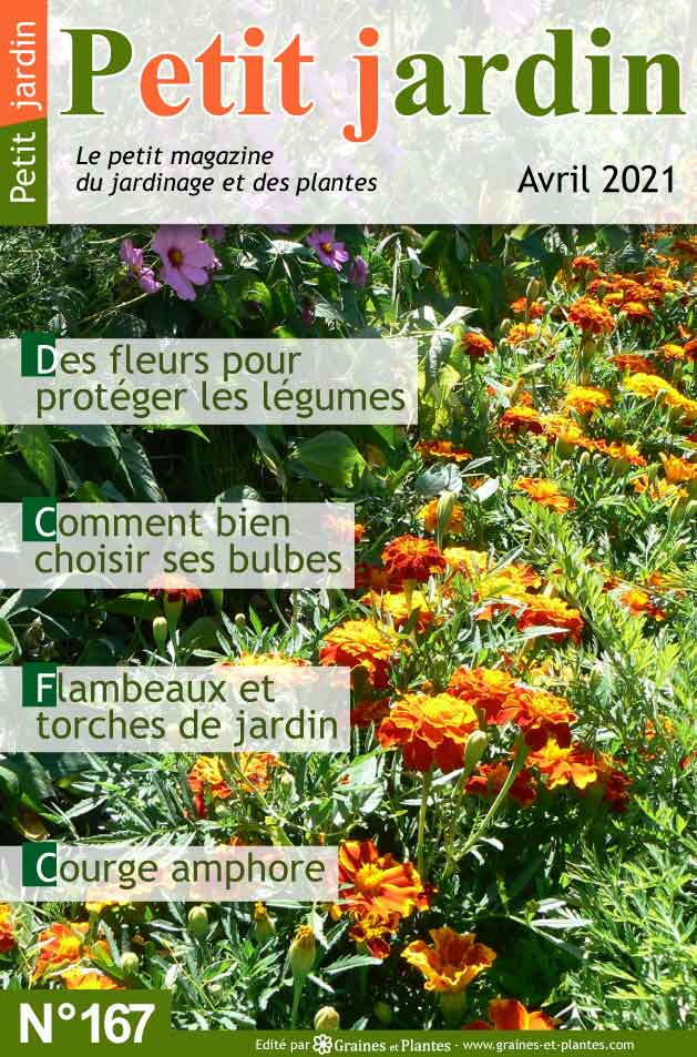 Info jardinage du mois d'avril 2021 Magazine-jardinage-petit-jardin-avril-2021