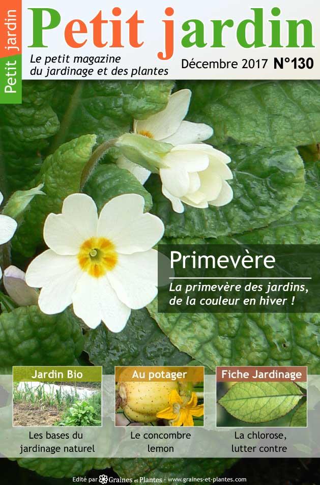 Jardinage du mois -Décembre 2017 Magazine-jardinage-petit-jardin-decembre-2017