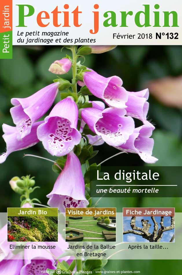 magazine petit jardin n 132 fevrier 2018 jardinage plantes et fleurs. Black Bedroom Furniture Sets. Home Design Ideas