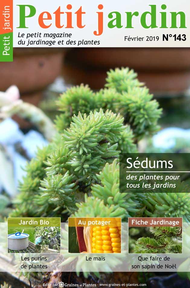 Info jardinage du mois de Février 2019 Magazine-jardinage-petit-jardin-fevrier-2019