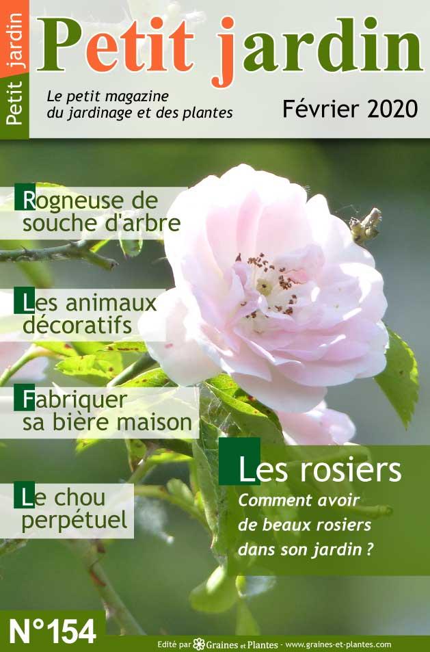 Info jardinage du mois de Février 2020 Magazine-jardinage-petit-jardin-fevrier-2020