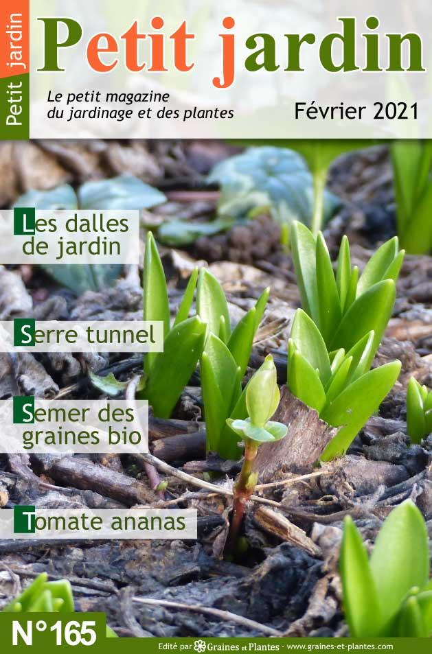 Info jardinage du mois de février 2021 Magazine-jardinage-petit-jardin-fevrier-2021