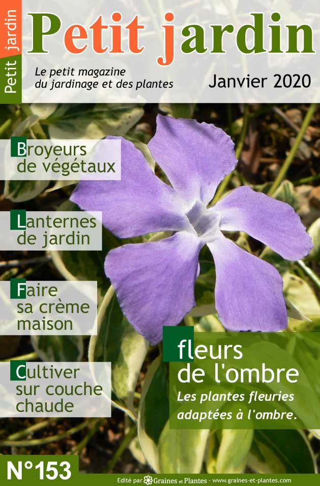 Info jardinage du mois de Janvier 2020 Magazine-jardinage-petit-jardin-janvier-2020