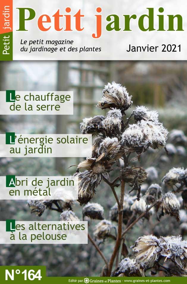 Info jardinage du mois de janvier 2021 Magazine-jardinage-petit-jardin-janvier-2021