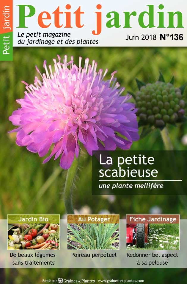 magazine petit jardin n 136 juin 2018 jardinage. Black Bedroom Furniture Sets. Home Design Ideas