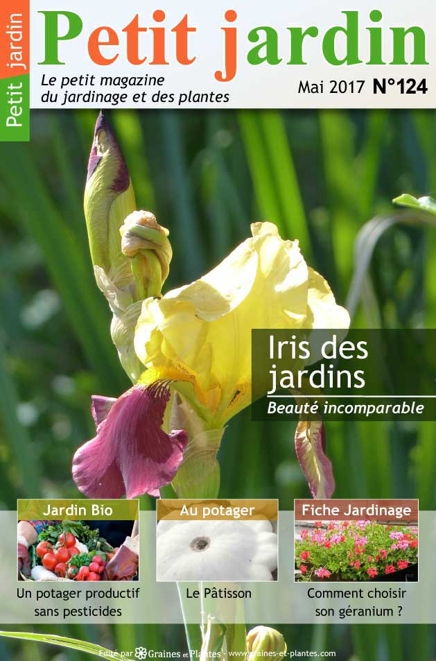 magazine petit jardin n 124 mai 2017 jardinage plantes et fleurs. Black Bedroom Furniture Sets. Home Design Ideas