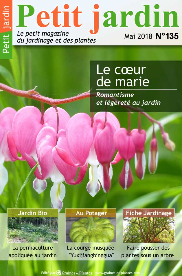 magazine petit jardin n 135 mai 2018 jardinage plantes et fleurs. Black Bedroom Furniture Sets. Home Design Ideas