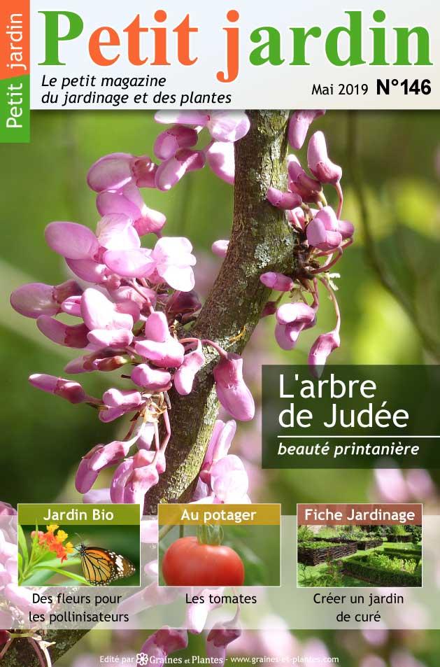 Magazine Petit Jardin N°146 - Mai 2019 - Jardinage, plantes ...