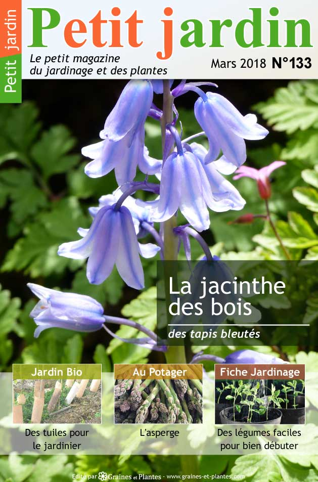 magazine petit jardin n 133 mars 2018 jardinage. Black Bedroom Furniture Sets. Home Design Ideas