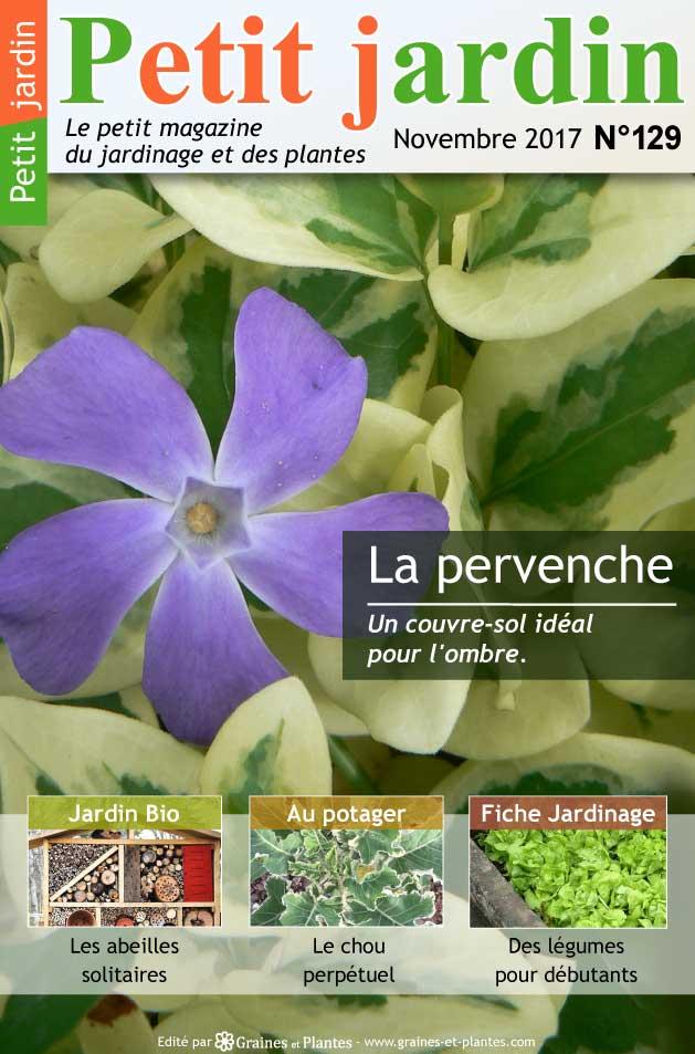 magazine petit jardin n 129 novembre 2017 jardinage plantes et fleurs. Black Bedroom Furniture Sets. Home Design Ideas