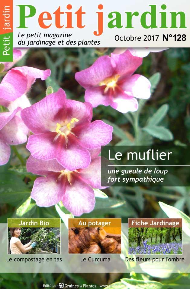 magazine petit jardin n 128 octobre 2017 jardinage. Black Bedroom Furniture Sets. Home Design Ideas