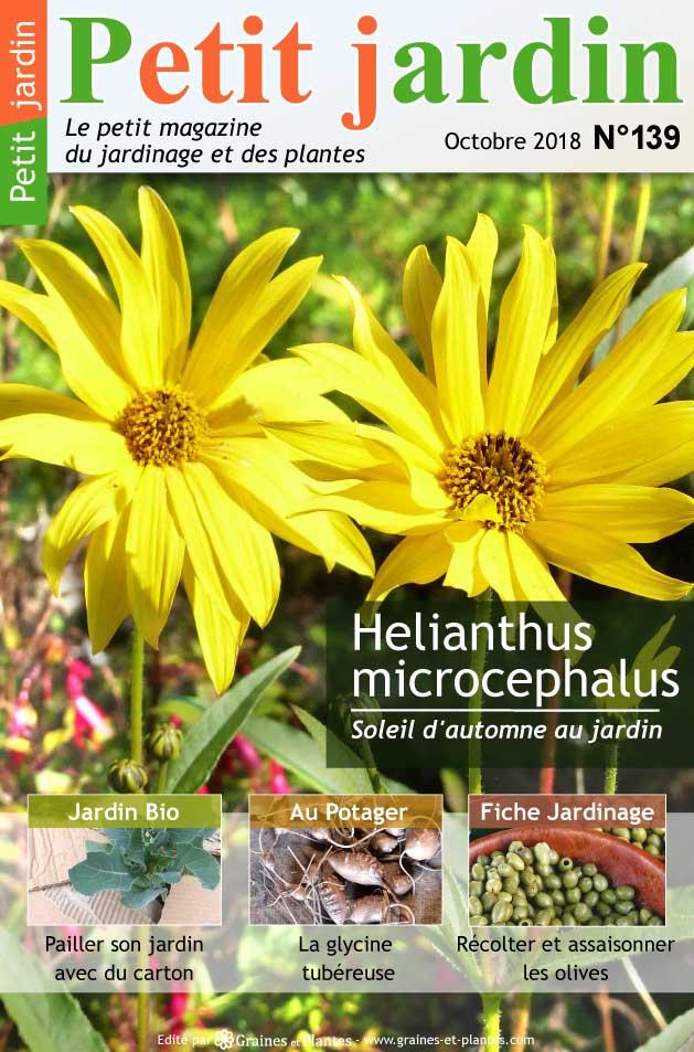 magazine petit jardin n 139 octobre 2018 jardinage plantes et fleurs. Black Bedroom Furniture Sets. Home Design Ideas