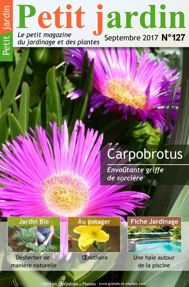 magazine petit jardin n 127 septembre 2017 jardinage plantes et fleurs. Black Bedroom Furniture Sets. Home Design Ideas