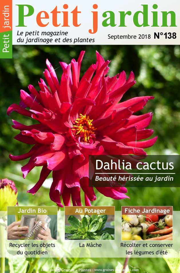 magazine petit jardin n 138 septembre 2018 jardinage plantes et fleurs. Black Bedroom Furniture Sets. Home Design Ideas