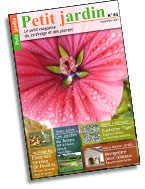 magazine petit jardin n 85 novembre 2013 jardinage plantes et fleurs. Black Bedroom Furniture Sets. Home Design Ideas