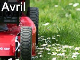 Travaux de jardinage en avril for Conseil en jardinage