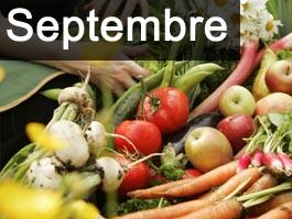 de jardinage en septembre