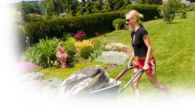 petit jardin le petit magazine du jardinage et des plantes. Black Bedroom Furniture Sets. Home Design Ideas