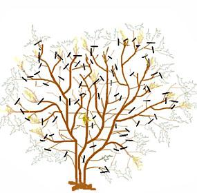 Taille du mahonia for Comment tailler un citronnier
