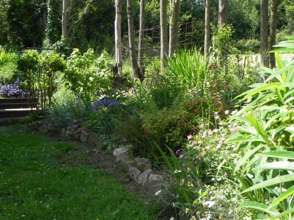 Question jardin plantation de graines for Graine de jardin