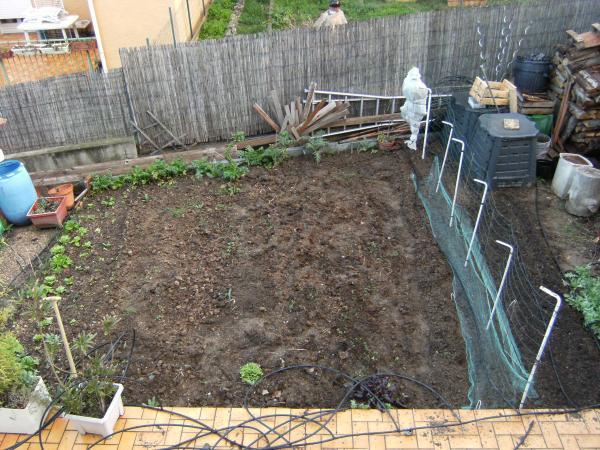 question jardin petit pois a rame. Black Bedroom Furniture Sets. Home Design Ideas